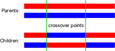 Two-point crossover