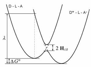Figure 1.2 Electron transfer free energy diagram (Marcus 1993)