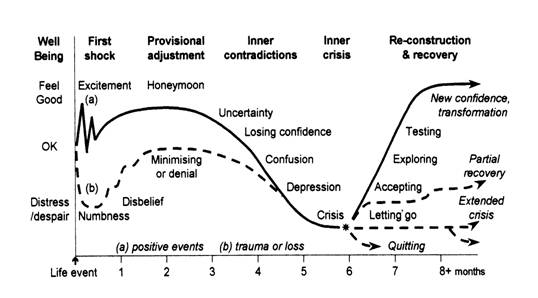 {The transition cycle - a template for human responses to change}