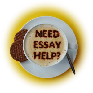 need-essay-help-fadeout-300x300