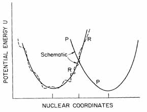Figure 1.1 Potential surface of reactants and products R curve illustrates the reactants plus environment, P curve is the products and environment. Abscissa is a multidimensional space, includes thousands of coordinates.